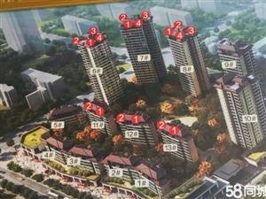 凯丽滨江17楼,无敌江景房,阳台正看渠江,还没网签,快来捡漏