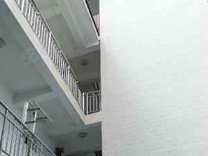 鼎毅中立地产急售新地小区1至3层整栋出租房有19间单间
