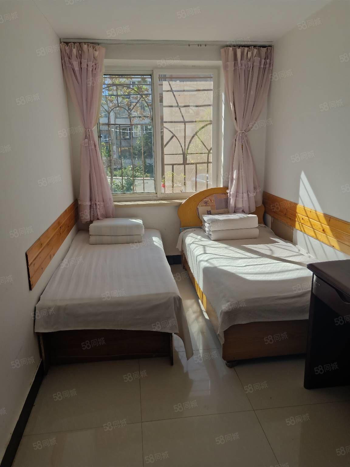 龙背山公寓700/月