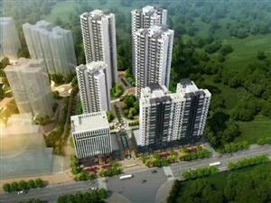 郴州高铁西站,首付两成,77平现房。