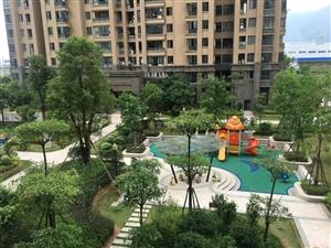 市医院旁全新小区碧城云亭,三彩,南北通透,刚需置业,附小学校