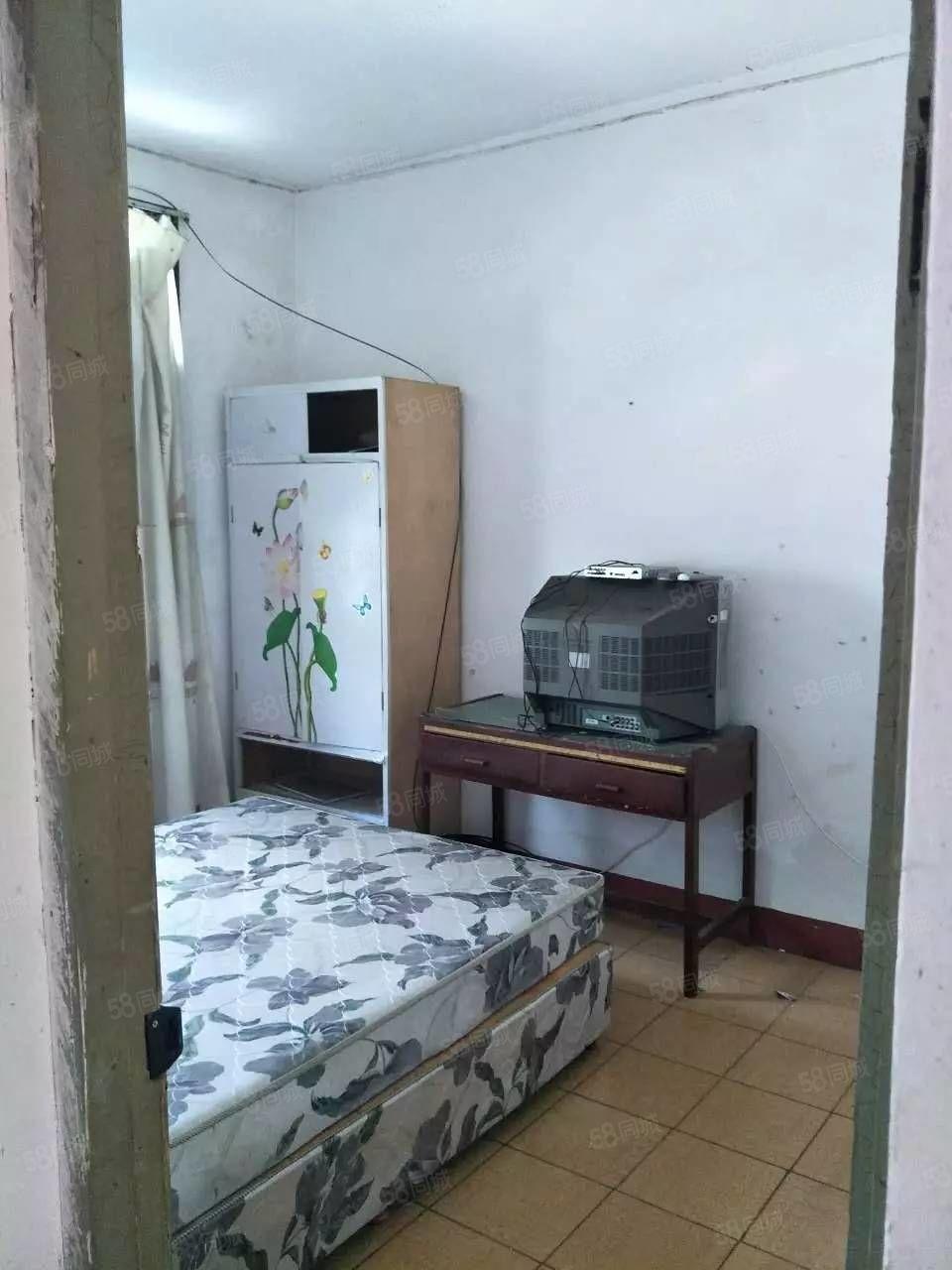 八一五西路人民医院附近蔬菜综合楼商品房出租