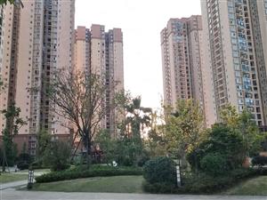 仁山公园,3室2卫套房,仅售28.8万,特价2690元/平米