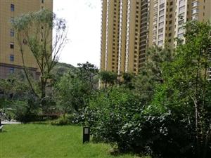 安定区新城阳光馨苑电梯房出租。环境好,院内可以停车。