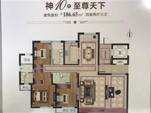 理想之城景观大平层四室186平米141万