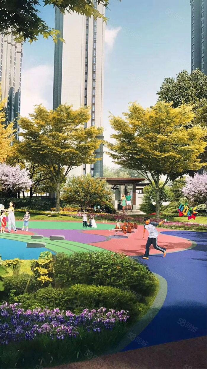 万达旁公园里双学位彩虹学校和西安交通大学高新学院