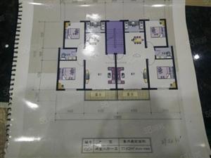 中厚新苑15万首付就能买一套大三房三种户型任你选