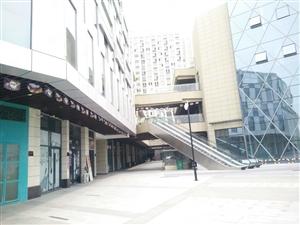 金科星辰网点商铺31平230平层高5.6可做二层