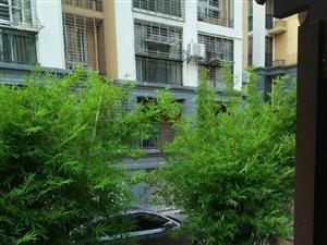 亿达花园精装3房3室2厅1卫
