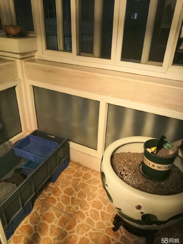 檀枫新苑3室1厅2卫