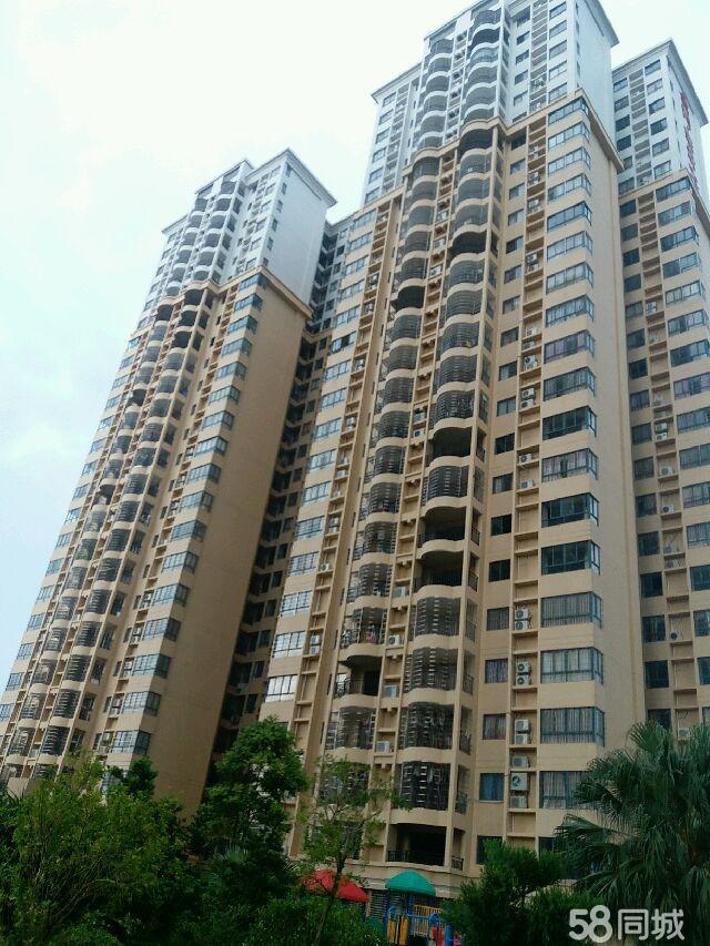 桂圆路,电梯,数码城,高楼层,133.5平方,毛坯4室