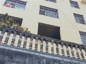 保靖县武装部后梨子园9室5厅5卫带地基新建私房