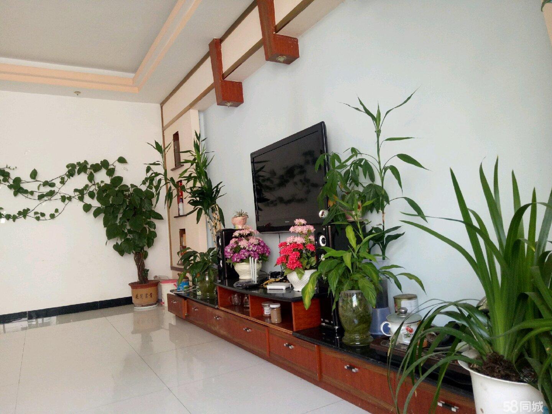 澳门拉斯维加斯官网县阳光社区菜溪商住自建房出售