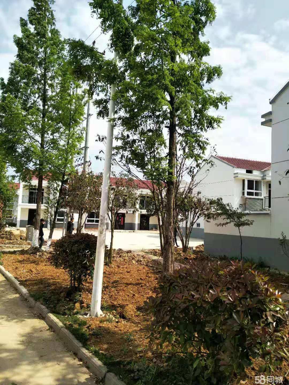 南京旁帶院子的現房小別墅總價32萬一套免費看房