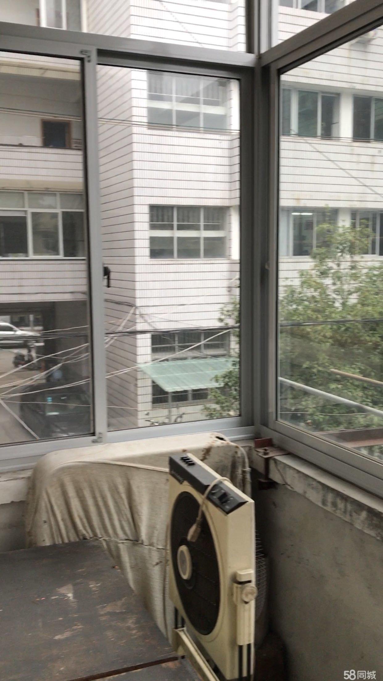 急售!新华路宿舍2室1厅1卫双阳台80平米