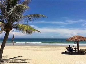 美海岛亚洲第一滩稀缺5A景区一线海景房