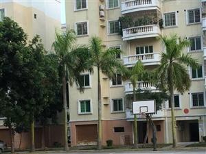 电白茂港海滨花园D型坐北向南楼房,140平方,三房两厅