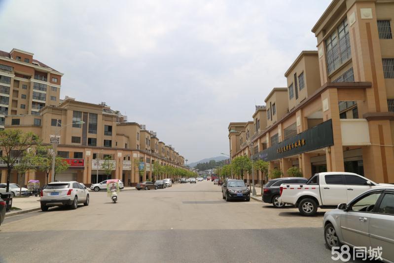 出售凯龙城(假日大酒店旁)四层商住楼一栋