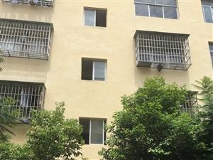 园丁小区单身公寓8万