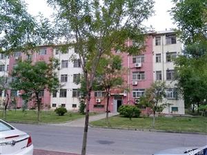 仙河镇文明二区3室2厅1卫83.5平米