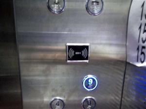 利川公园路单身电1室1厅20平米精装修押一付一