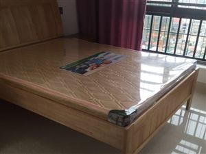 漳州市区多套单身公寓出租(个人可月付)