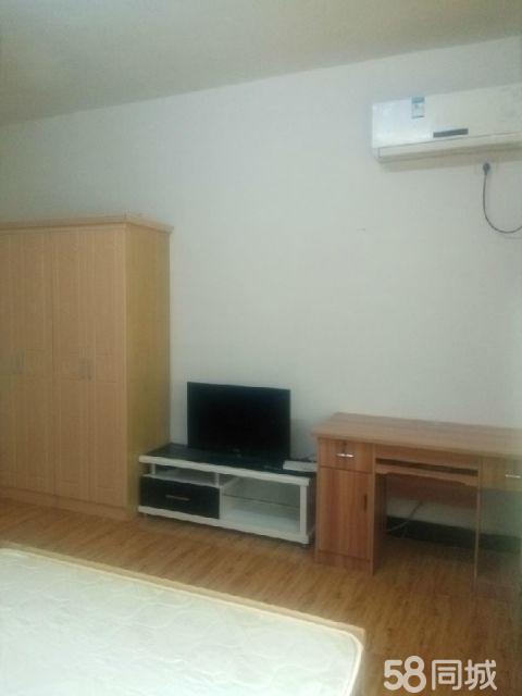800元特别便宜出租,精品单身公寓,锦江广场商贸城一室一厨卫