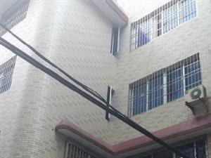荷园新村整幢民房四层半实小、城南双学区小车直达门口