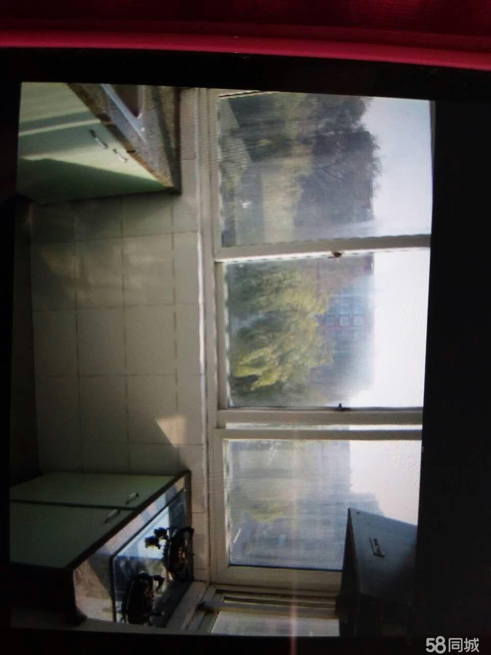 新大陆连山区新大陆1室1厅40平米简单装修押一付一