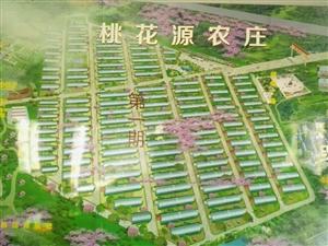 澳门网上投注官网唯一生态庄园农家院300平13万起送小院送菜地养生养老