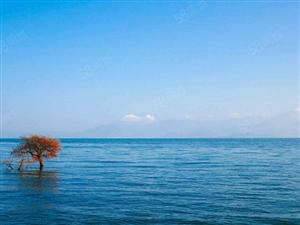 大理海东新城69.5平端头房买一送一,10层以上看洱海景观