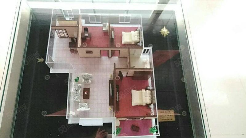 郁金香花路通建业城首付10万住大三室洋房电梯免费用