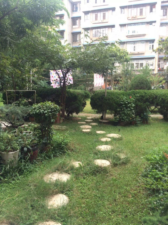 城建局3楼有花园2室简单装修