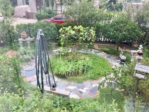 文园花园一二楼复式加负一层带院子可办公可居家