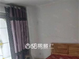 杨柳国际新城小公寓干净整洁看房方便