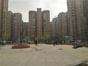 新城区新装修130平方,年租1.4万套房出租