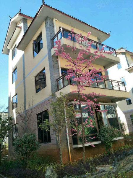 丽江假日大飘窗豪华装修小公寓,户型设计合理,超高利用率