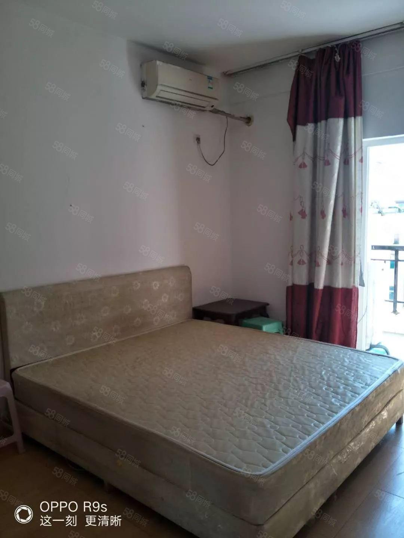 北站旁新佳坡步行街楼梯5楼1室1卫1阳单身公寓出租可押一付一