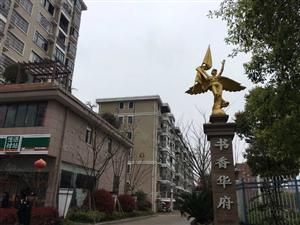 铅山县成熟小区书香华府楼梯房出售,城东小学房F28