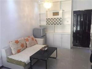 欧亚路友谊小区,精装新房一室一厅拎包入住