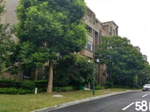 楚天城别墅337平米带120平米花园双车库卖176万