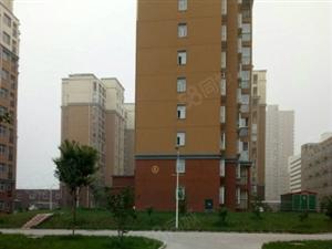 出租龙安路北段新汽车站附近小区1室1厅精装双气带电梯家具家电