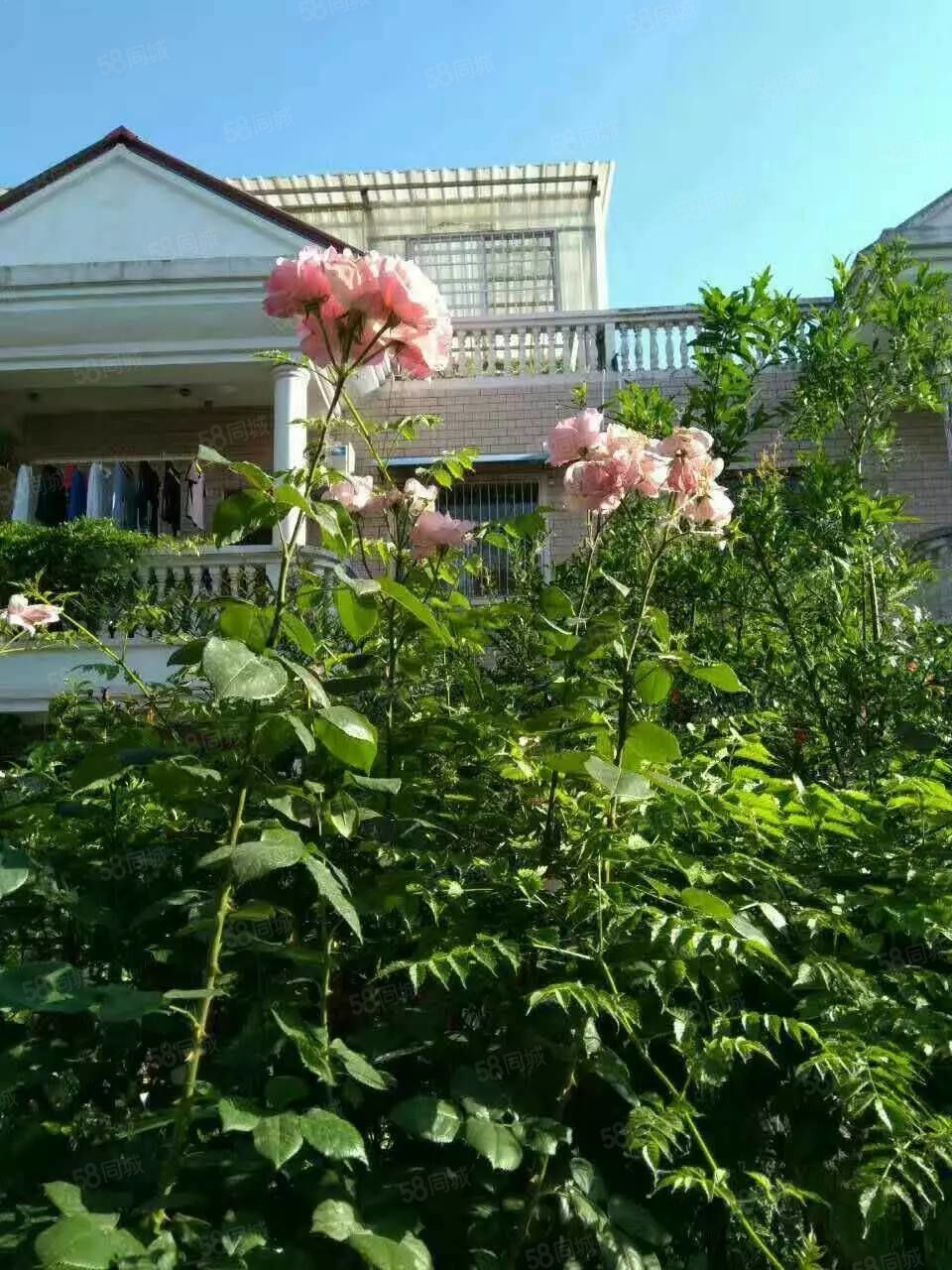 新世纪花园独栋别墅中装四房两厅两卫
