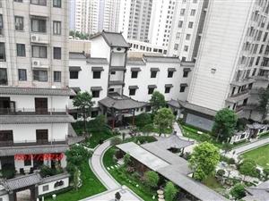 儒林商都B区文化园116平3室可更名网签可公积金代款售93万