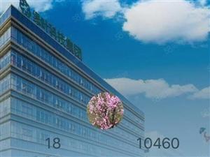 站北新苑!东大山15楼明厅!70平方米毛坯!