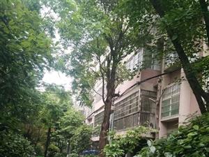 香榭帝景两房可以改三房价格美丽