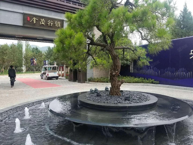 金茂古镇内有博物馆,影院,剧院等设施,配套完美适合度假养老