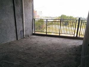 二完小学位房电梯房毛坯罕见房源