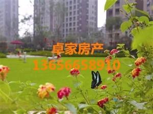 卓家房产德信上城赠送16方,满两年205万卓家房产