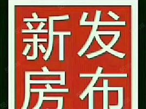 毛坯:钻石明城3楼89.46平35.7万